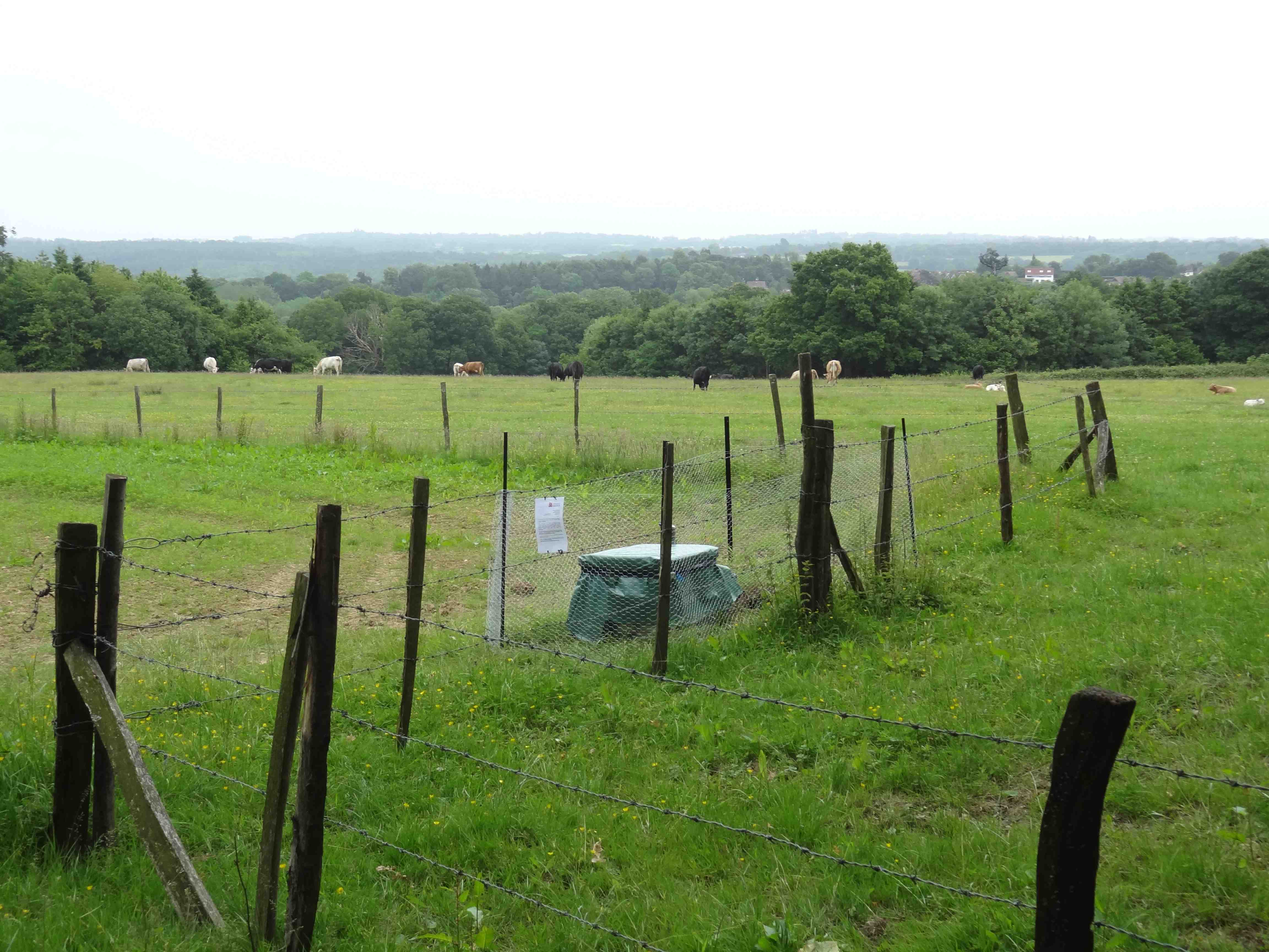 A finished seismometer site nestled in the heart of the UK countryside